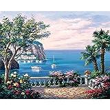 FVNR DIY pintura por números para adultos DIY lienzo Set de pintura para pared arte regalo paisaje costero mejora la capacidad práctica 16 x 20 pulgadas sin marco