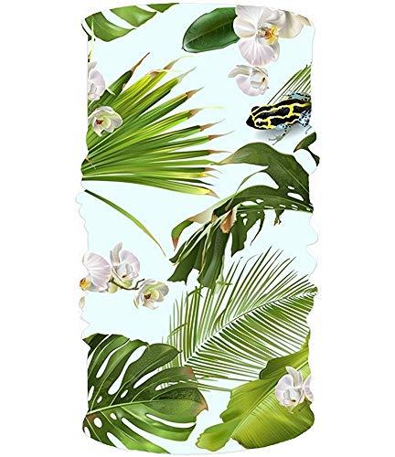 Bandana Headband Tropical Orchid Frog Headwear Sport Sweatband Yoga Head Wrap For Men Women