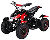 Actionbikes Motors Mini Eléctrico Niños ATV Cobra 800 Vatios Pocket Quad - Rojo