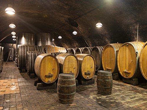 Von der Traube zum Wein - Mit Fritz Keller in Baden