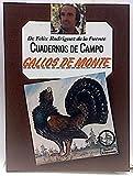 CUADERNOS DE CAMPO, nº 54 - GALLOS DE MONTE