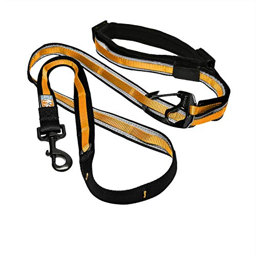 Kurgo Quantum (TM) Hände frei Hundeleine für laufen, gehen oder Wandern & reflektierende Hundeleine mit verstellbare Taille Gürtel, 6 Varianten in einer flexi hundeleine, orange