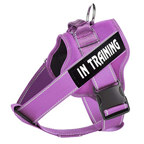 WOCUME Dog Harness No Pull Pet Vest Harness Fixed Adjustable Training Vest with Handle, Dog Vest 3M Reflective Walking Harness for Large Dogs Easy Control Harness (L.Purple)