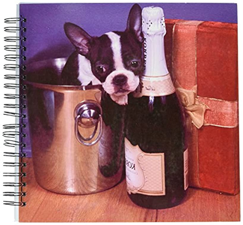 3dRose db_3113_2 Boston Terrier Satine Memory Book, 12 by 12-Inch