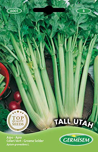 Germisem Tall Utah Semillas de Apio 3 g, EC6001
