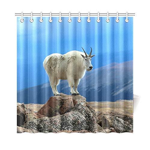 Zemivs Decoración para el hogar Cortina de baño Cabra montés de pie sobre Roca Tela de poliéster Cortina de Ducha Impermeable para baño, Cortinas de Ducha de 72 x 72 Pulgadas Ganchos incluidos