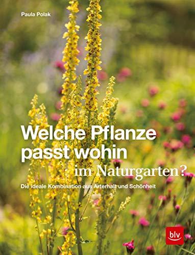 Welche Pflanze passt wohin im Naturgarten?: Die ideale Kombination aus Arterhalt und Schönheit (Gartengestaltung)