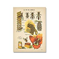 アンティークビスプリント天然ポスター昆虫ビンテージフレンチミツバチ壁アートキャンバス絵画セピアトーン蜂ダイアグラム壁の装飾 (Color : A, サイズ : 50x70cm No Frame)