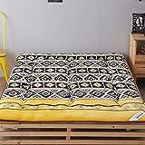 HM&DX Reversible Futón Colchón Suelo Tatami, Acolchado Antiescaras Colchón Topper Dormitorioir Mat para Dormitorio Alcoba -G 120x200cm(47x79inch)