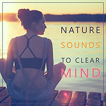 Nature Sounds to Clear Mind – Peaceful Mind, Nature Waves, Relaxing Sounds, Rest All Day