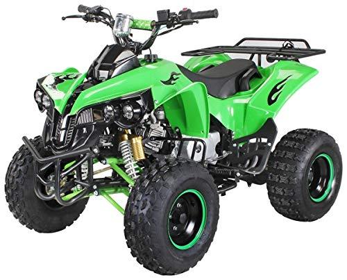 Kinder Quad S-10 125 cc Motor Miniquad Midiquad 125 ccm Warrior (Grün)