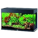 *Juwel Aquarium 1300 Rio 125, schwarz