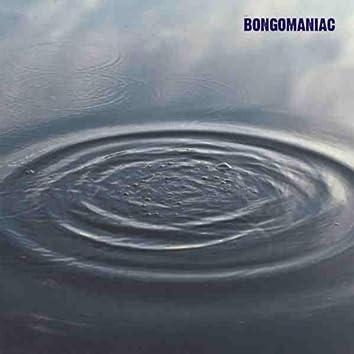 bongomaniac begins