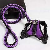 IKMV Fashion K9 Arnés para mascotas Collar ajustable para perros Arnessees y correa Set de entrenamiento al aire libre Chihuahua Arnés Diseñador Productos para mascotas-púrpura set_XS