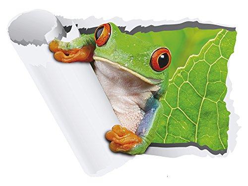 GRAZDesign Wandaufkleber Fliesenaufkleber - Selbstklebendes Wandbild Wand Durchbruch - Wandtattoo Frosch / 56x40cm / 721058_40