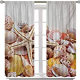 Aishare Store Curtains, Pile of Seashells Nature Collection Beach Theme Sea Starfish Spiral, 2 Panels 84 Inches Long Energy Saving Blackout Curtains for Nursery, Coconut Cream Orange