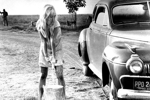 Trokomado #Cool #Hand #Luke #Joy #Harmon #in #Wet #Dress #Sexy #as #she #Washes #car Poster Wall Art Home Decor Gifts for Lovers Painting