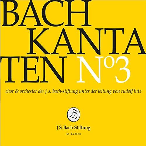 """Kantate zum 4. Advent, BWV 132 \""""Bereitet die Wege, bereitet die Bahn!\"""": V. Arie. \""""Christi Glieder, ach, bedenket\"""" (Altus)"""