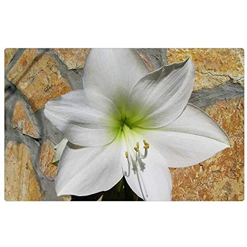 Tapijt Amaryllis Wit Bloem Bolvormige Plant Indoor deurmat Vloer Mat Tapijt deurmat