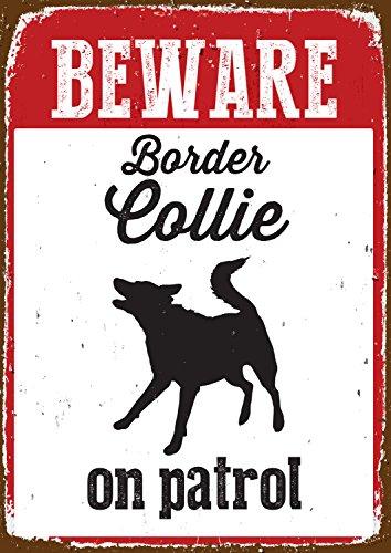 Aimant en Acier Et Beware of The Border Collie Signe sur Patrol Boîte