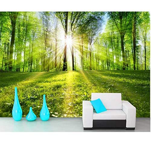 3D Hd Wallpaper Wandbild Isoliert Wald Landschaftsmalerei Von Bäumen gesäumten Straße Sonnenlicht Wald Fernseher Sofa Hintergrund Wand-280x200cm (110 * 78inch)