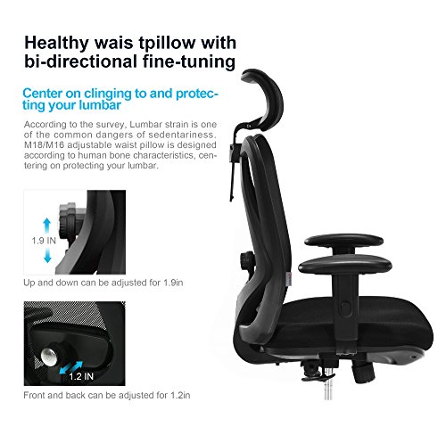 SIHOO Ergonomics Office Chair Computer Chair Desk Chair, Adjustable Headrests Chair Backrest and Armrest's Mesh Chair (Black)…