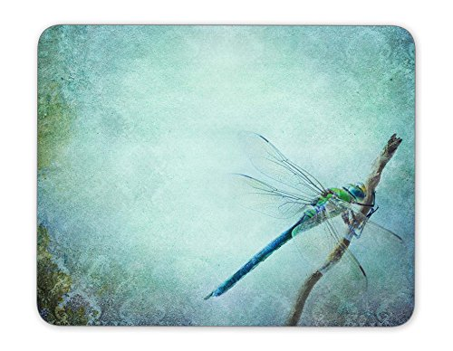 ABin Vintage Shabby Chic Background with Dragonfly Mouse pad Mouse Pad The Office Mat Mouse Pad Gaming Mousepad Nonslip Rubber Backing