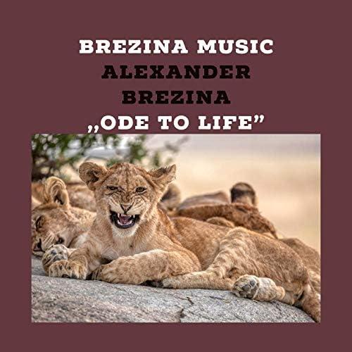 Alexander Brezina