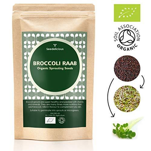 Seedelicious Brokkoli Bio-Sprossen-Samen 500g - Hohe Keimfähigkeit Brokkolisamen zu Mikrogrüns- Schnell wachsendes hohem Sulforaphan halt Sprossen Superfood für besonders gesunde Ernährung