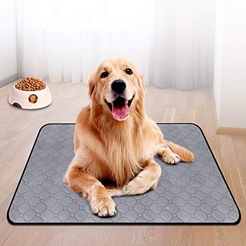 Are Dog Pads Good