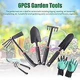 Juego de 6 herramientas de jardín de acero inoxidable, juego de herramientas de jardín con tijeras de jardín, paleta de plantación, rastrillo manual, guantes de jardín