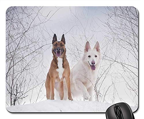 Gaming Mouse Pads,Mouse mat,Winter Snow Cold Dog Canidae White Shepherd