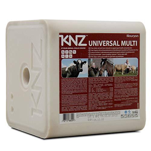 A&G-heute 10kg 1 UNIVERSAL Multi Lecksteine 10kg Mineralleckstein Salzleckstein Rinder Kälber Ziegen Pferde Weiß