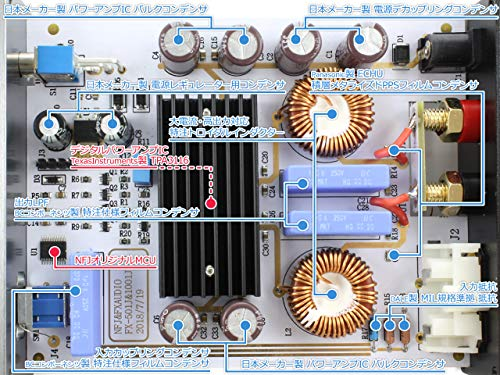 『FX-AUDIO- FX-1001J TPA3116デジタルアンプIC搭載 PBTL モノラル パワーアンプ 100W×1ch ParallelBT (ブラック)』の4枚目の画像