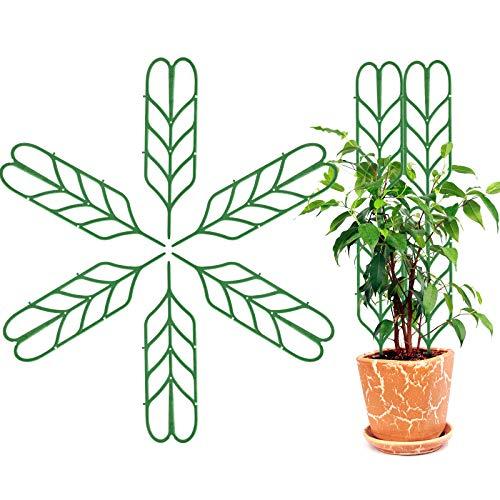 XunHe - Supporto per piante in vaso a forma di foglia, regolabile, mini staffa per rampicanti, 6 tralicci da giardino, 10 clip per piante, 10 fascette per piante per steli, vite, ortaggi in vaso