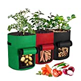 GoaKitum - Bolsas de cultivo para patatas, 3 unidades, con ventana y asas, tela no tejida de 7 galones, contenedores para plantación de jardín, para patata, zanahoria, tomate (negro, verde, rojo)