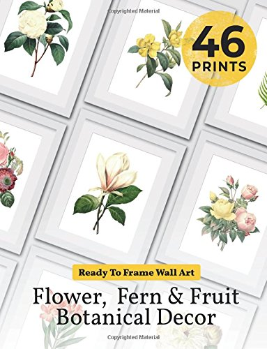 Ready to Frame Wall Art: Flower, Fern & Fruit Botanical Decor