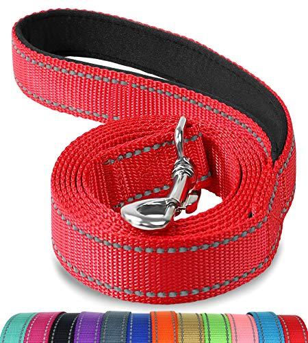 Joytale Hundeleine mit Bequemen Gepolsterten Griff, Reflektierend Hunde Leine für Ausbildung und Wandern, Nylon Hundeleine Für Mittlere und Große Hunde,Rot