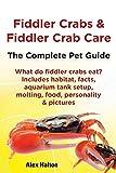 Fiddler Crabs & Fiddler Crab Care.: The Complete Pet Guide. Includes habitat, facts, aquarium tank...