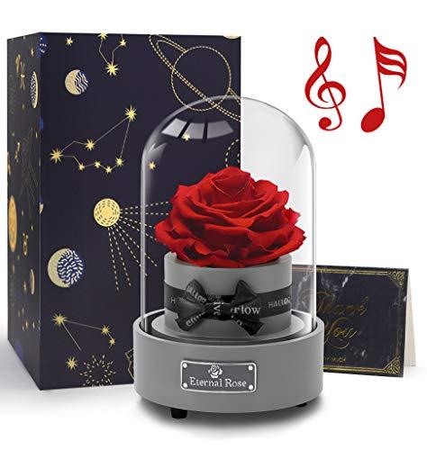 Hallooki HAUS Ewige Rose Spieluhr, Rosenbox mit Infinity Rosen, Echte Blumen Geschenk für Frau Freundin Muttertag Geburtstag Hochzeit Weihnachten Valentinstag