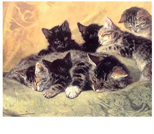 CYKEJISD Malen Nach Zahlen DIY 3D Civet Cats Craft Handwerk Heimtextilien Wanddekoration DIY Malerei Auf Leinwand Für Wohnkultur