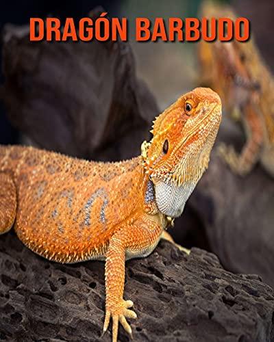 Dragon Overnight PDF Free Download