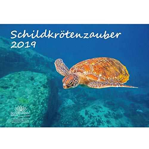 Schildkrötenzauber · DIN A3 · Premium Kalender 2019 · Schildkröte · Amphibien · Reptilien · Regenwald · Echsen · Schildkröten · Schlangen · Tiere · Wildnis · Natur · Edition Seelenzauber