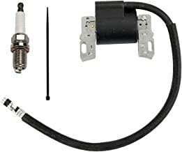 Best 8 hp briggs and stratton coil Reviews