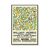 Impresión de lienzo de William Morris, póster de exposición de museo, estilo de arte subterráneo de Londres, lienzo sin marco D 60x90cm
