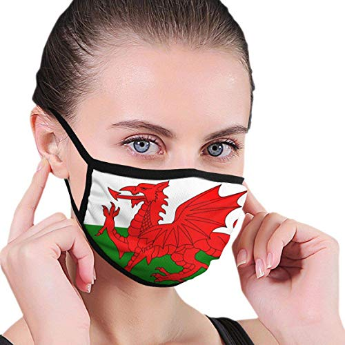 Welsh Dragon Flag Seamless Face Mask Bandanas for Unisex Windproof and Dustproof Mouth Mask,Face Cover with Adjustable Elastic Strap