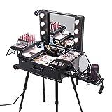 Anaelle PandamotoMallette Maquillage Trolley Beauty Case Voyage Valise Studio Table...