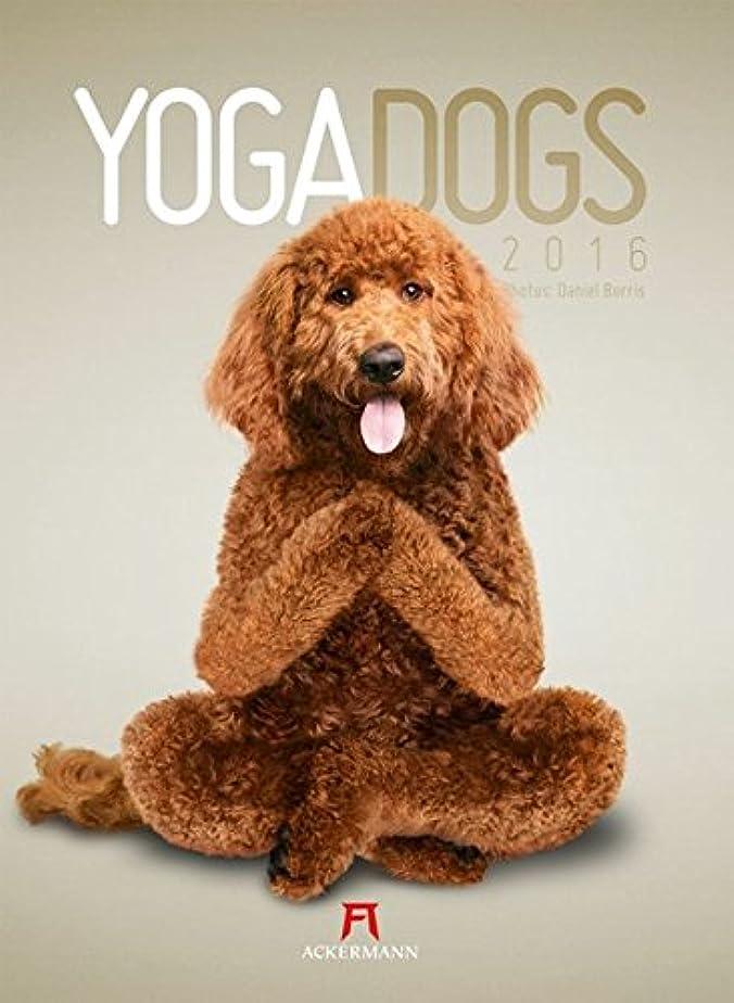 元に戻すマトン私たち自身Yoga Dogs 2016