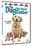 The Dog Who Saved Easter [DVD] [Reino Unido]