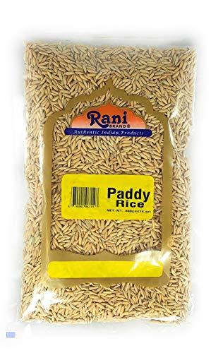 Rani Paddy Rice (Riso grezzo non finito) 14 once (400 g) ~ Tutto naturale